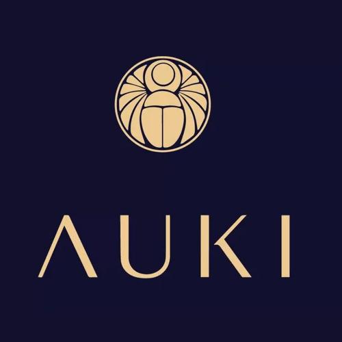 Auki Explainer
