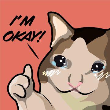 I'm Okay Cat